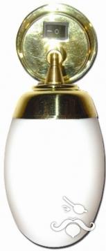Kabin Lambası